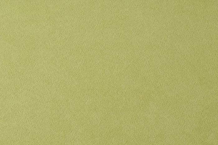 302_pistachio